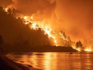 فيديو وصور.. اليونان تكافح حرائق مستعرة في محيط العاصمة