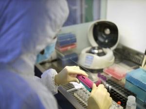 صادم!.. منظمة الصحة العالمية تتوقع ألا يكون حلاً سحرياً لكورونا