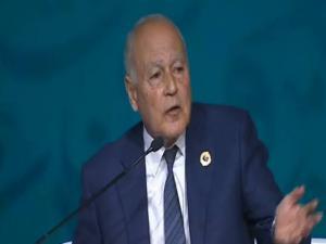 أبو الغيط: القضية الفلسطينية ضاعت