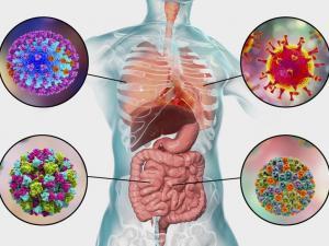 ما الفرق بين أعراض الإنفلونزا وفيروس كورونا الجديد؟