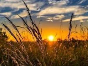 الطقس: أجواء حارة ولا تغير على درجات الحرارة