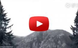 Embedded thumbnail for  طائرة درون تحمل كلباً في الهواء