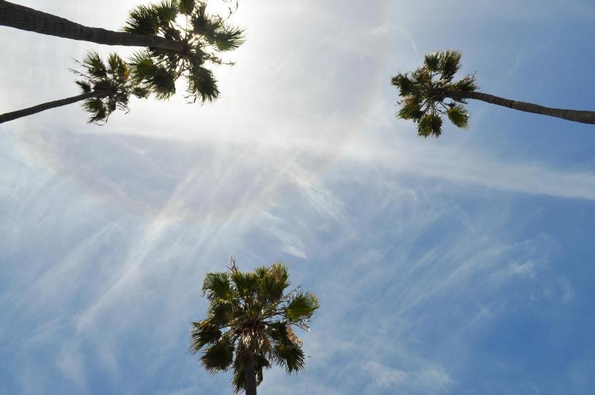 حالة الطقس: الجو لطيف ومعتدل والحرارة تواصل الارتفاع