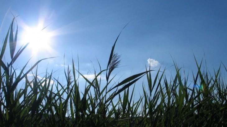 حالة الطقس: لطيف ودرجات الحرارة أعلى من المعدلات السنوية