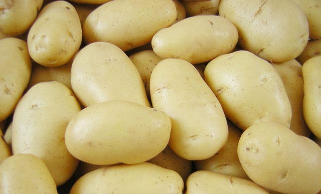 """دراسة تكشف """"حقائق صادمة"""" عن البطاطا!"""