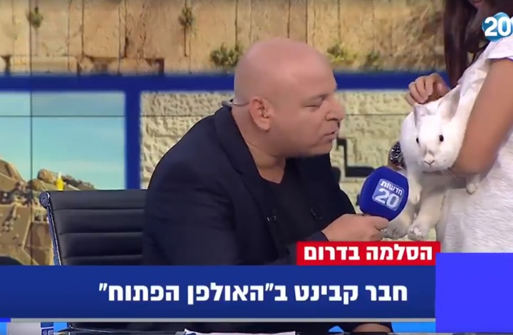قناة إسرائيلية تجري مقابلة تلفزيونية مع أرنب.. لماذا؟ (شاهد)
