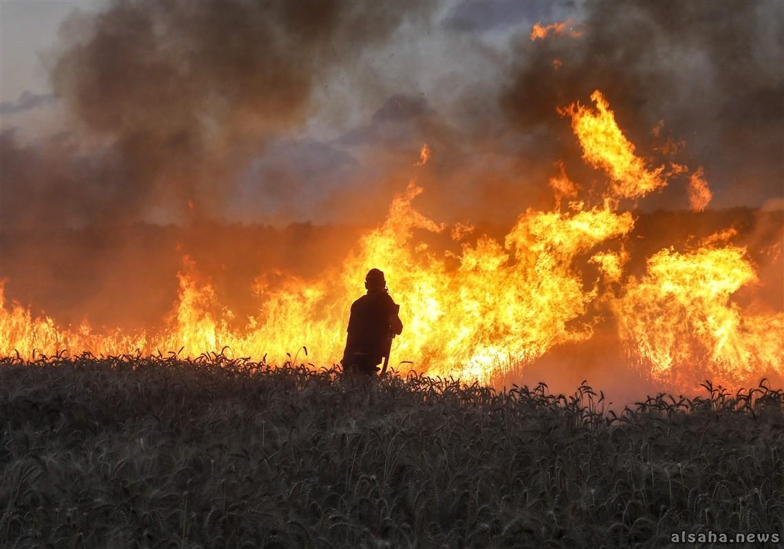 اندلاع حريق في النقب الغربي لم تُعرف أسبابه