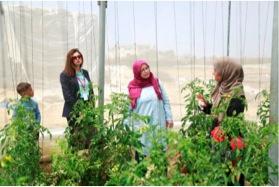 """زيارة تفقدية لمشاريع زراعية مدرة للدخل ضمن برنامج """"وجد"""" لرعاية الأيتام لعدد من السيدات بمشاركة بنك فلسطين ومؤسسة التعاون"""