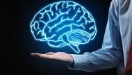 بدءا من هذا السن.. الدماغ البشري يصاب بالشيخوخة!