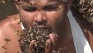 فيديو يشعل مواقع التواصل... رجل يلتهم آلاف النحلات حيّة!