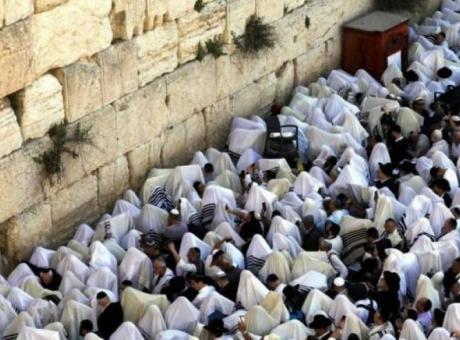 منذ ساعات الفجر الأولى.. مئات المستوطنين يقتحمون حائط البراق بالمسجد الأقصى