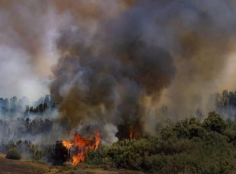 اندلاع 3 حرائق في غلاف غزة