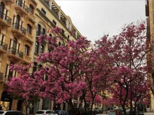 شارع فوش بيروت