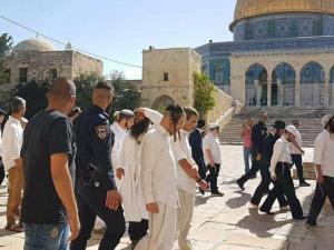 مستوطنون يجددون اقتحام باحات المسجد الأقصى