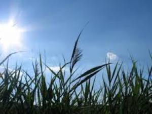 حالة الطقس اليوم الخميس: انخفاض طفيف على درجات الحرارة