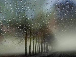 انخفاض الحرارة وأمطار وعواصف رعدية