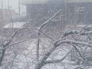 حالة الطقس: منخفض جوي مصحوب بأمطار وثلوج