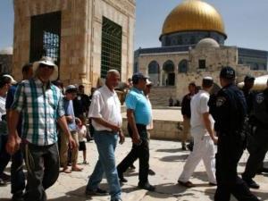 53 مستوطنًا وشرطيًا إسرائيليًا يقتحمون الأقصى