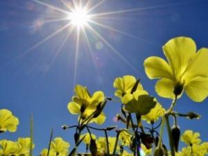 حالة الطقس :أجواء صيفية شديدة الحرارة