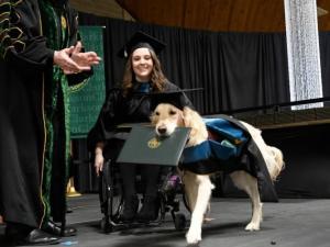 جامعة تمنح كلباً شهادة دبلوم فخرية