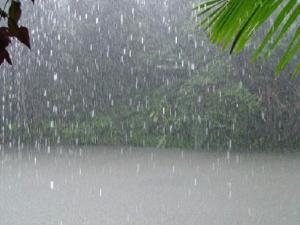 اجواء باردة وأمطار متفرقة