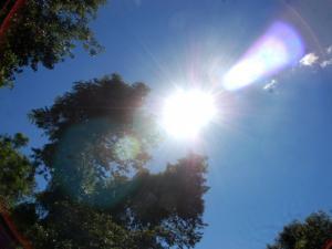 حالة الطقس: ارتفاع درجات الحرار