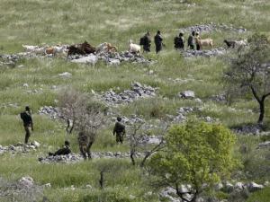 مخطط احتلالي لمصادرة 740 دونماً في القدس